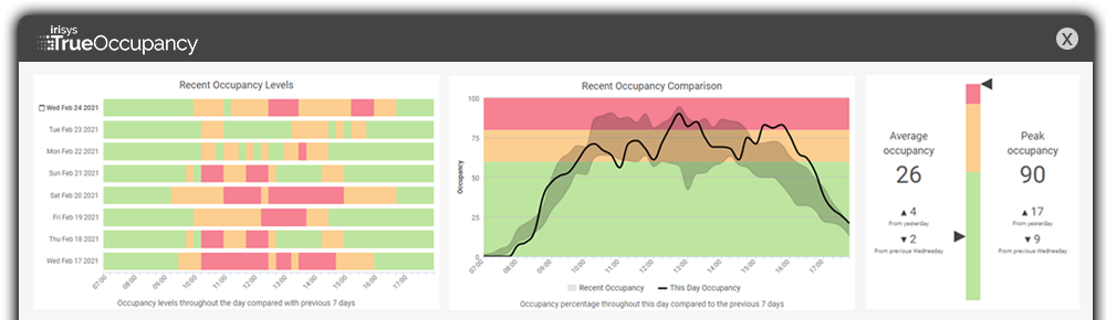 Insights and Reporting - 1000x290